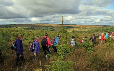 Clare Walking Tours – Walking Breaks in East Clare